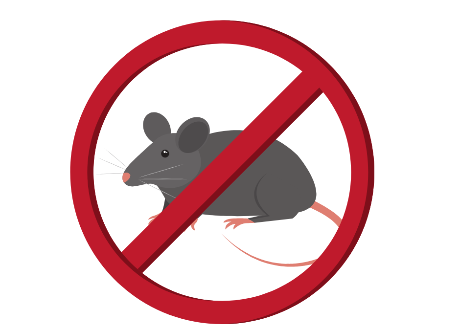 Prevent Mice in the Kitchen